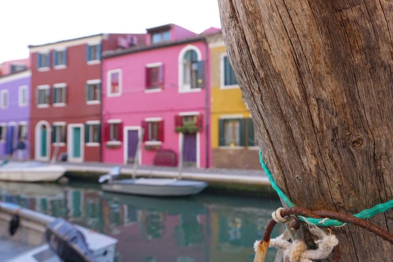 EyeEm Selects Water Architecture Painted Houses Tree Peeking Behind Hiding