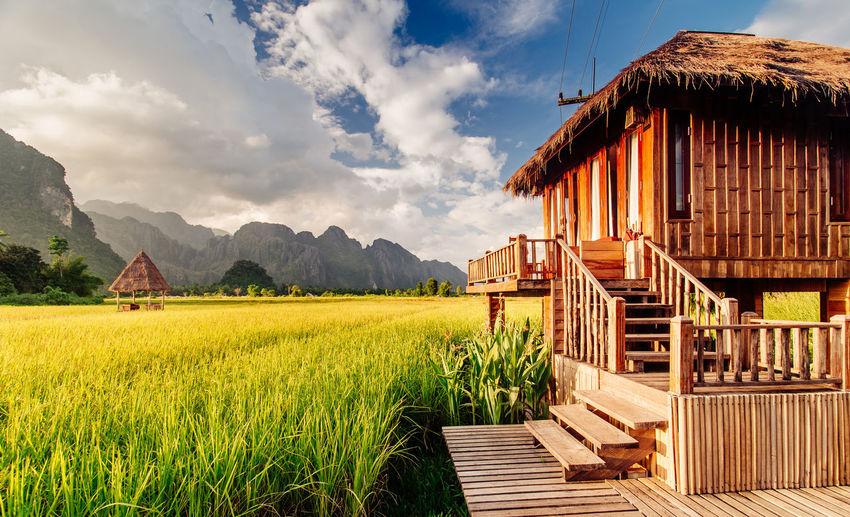 Vang Vieng Rice Field - Laos