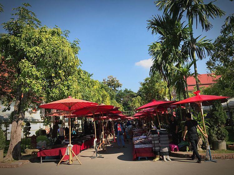 แม่ค้าขายของในวัดในวันแดดร้อนจ้อง (ร่ม) แดงช่วยบังแสงแดดได้ดี Tree Sunlight Outdoors Large Group Of People Growth Women Travel Destinations Day Real People City Sky Crowd Men Nature Architecture People Adult Umbrella Traveling Temple - Building Umbrellas Temple Architecture Chiang Mai | Thailand Walkingstreet Walking Street