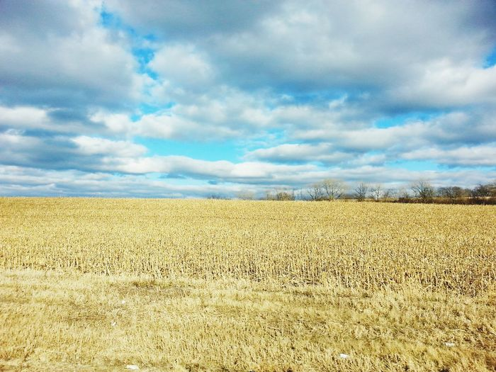 Spring fields Taking Photos Check This Out Portrait Of America Aneye4theshot Clouds Sky Wisconsin Nature