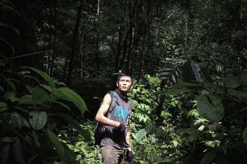 Young man standing in forest