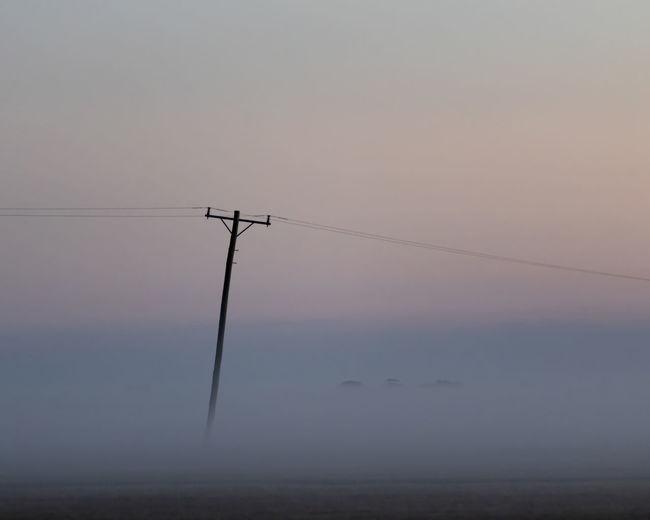Foggy Pole