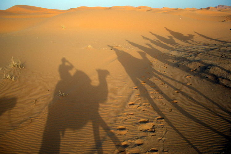 Shadow of people on sand dune in desert