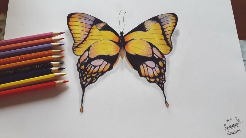 Hellow yellow 💛 Drawingwork Illustration Colorful ArtWork Art, Drawing, Creativity Pencil Drawing Art Butterfly Nature Drawing