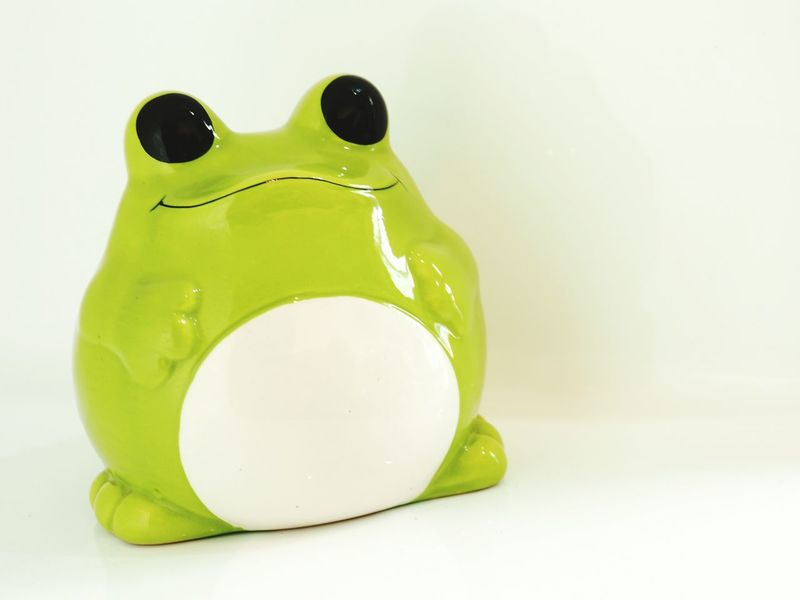 No People Close-up White Background Savings Money Box Bullfrog Cartoon Cute Frog Frog Cute Kero Piggy Bank Studio Shot