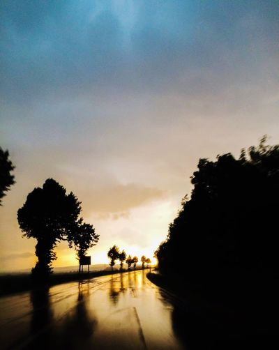 Tree Sunset Silhouette Sky Nature Outdoors Beauty In Nature No People Scenics Water Rainy Days Rain Street Wet Day Streetphotography Nature Evening Sky Evening Light EyeEm Gallery Tree Cloud - Sky EyeEm Nature Lover Storm Cloud