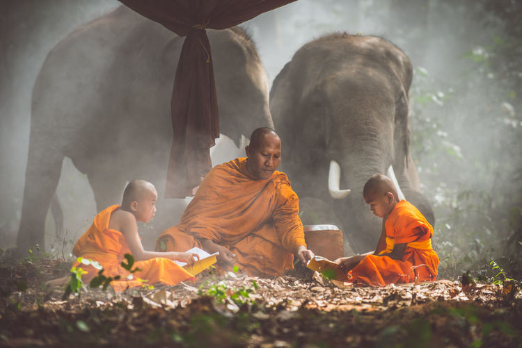Monks reading books while sitting by elephant at forest