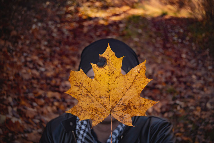 Person on maple leaf during autumn