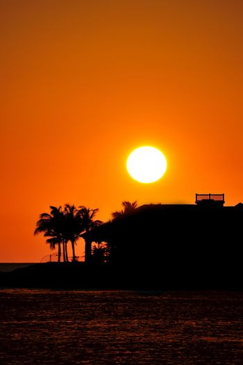 Sunset in the Florida Keys. Beauty In Nature Calm Clear Sky Dramatic Sky Florida Keys Nature No People Orange Orange Color Outdoors Outline Palm Tree Romantic Sky Scenics Sea Silhouette Solitude Sun Sunset Tranquil Scene Tranquility Tree Vacations Vibrant Color Water