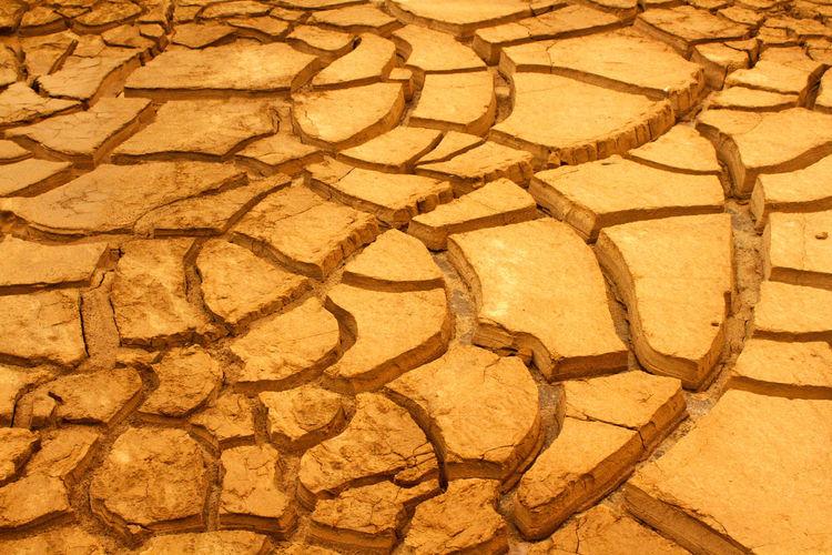 Full frame shot of paving stone