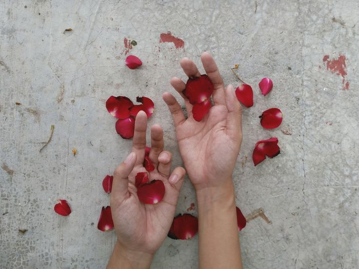 The Still Life Photographer - 2018 EyeEm Awards 10 Human Body Part Red One Person Body Part High Angle View Human Hand Directly Above Petals Of Roses Eyeem Philippines Nature Red Inner Power Visual Creativity