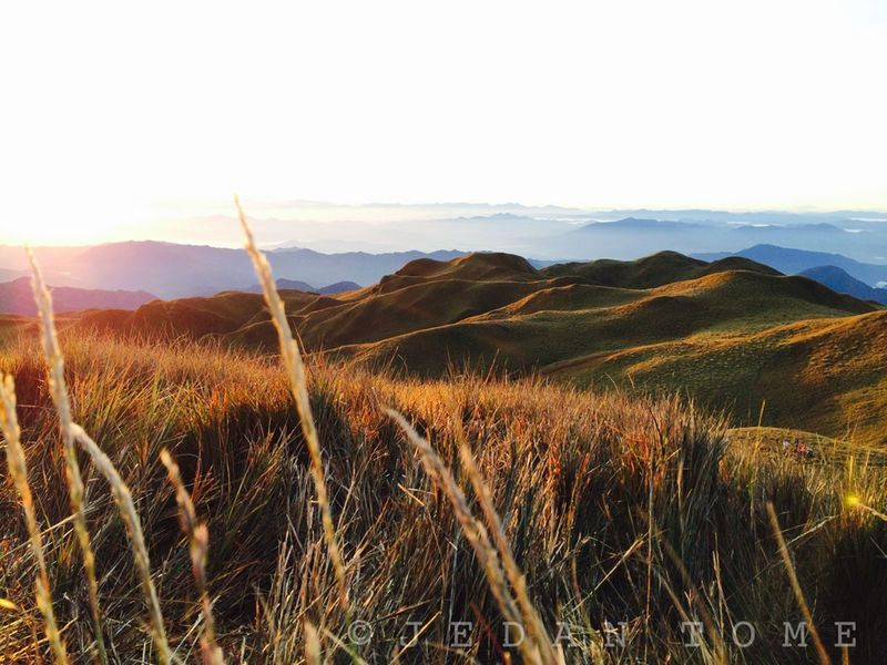 Hiking is fun fun fun Hiking Grassland Mt.pulag Adventure