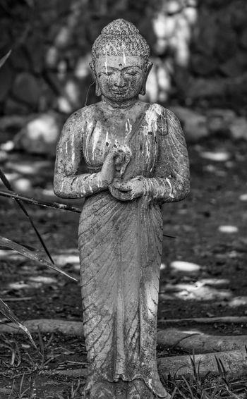 Statue of buddha on field