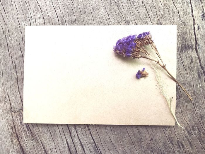 Brown blank paper with flower on wood Wood - Material Still Life High Angle View Table No People Flower Indoors  Close-up Day Backgrounds EyeEmNewHere