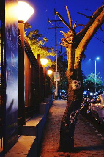 Night Architecture City Tree Illuminated Sky No People Outdoors Nighyphotography Streetphotography Streetlamps Roadsidephotography Footpath Indianphotographer Scenics DSLRShot Perfect Shot IAmNikon,