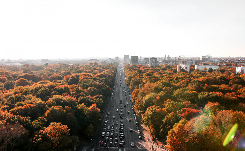 High angle view of trees and plants in city against clear sky
