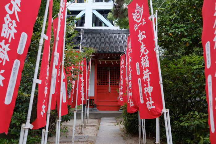 Japan Japan Photography Matsudo Shrine Shrine Of Japan Fujifilm Fujifilm_xseries X-t2 松戸 神戸 神社