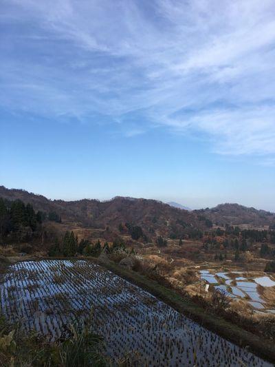 この 棚田 Tanada の水の反射は、なんとも言えない魅力があるなぁ。真冬とか夏とか実りの収穫前とかにきて観たいなぁ。 Sky Tranquility Nature Scenics Tranquil Scene Beauty In Nature Rural Scene 新潟県 Niigata 十日町 Touka-machi 星峠 Hoshitouge Non-urban Scene Water Reflection Landscape Rice Field Rice Terraces From My Point Of View EyeEmBestPics EyeEm Best Shots Agriculture