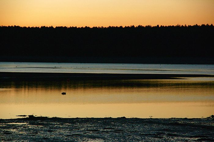 Beautiful Sunset at Findhorn Bay Beach Nature Sunset Tranquil Scene Beauty In Nature Water Scenics Tranquility Sea Silhouette Shore Outdoors Idyllic Landscape Sky Orange Findhorn Findhorn Bay Scotland 💕 Moray Morayshire