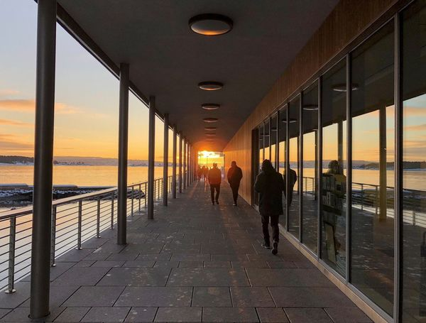Sunset at the OSLO fjord #sea #oslofjord #fjord #norway #iphonex #photography #Nature  #Oslo Sunset Sea Walking Real People Water Built Structure Architecture People Nature Silhouette
