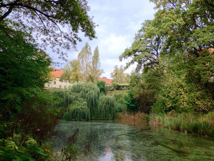Urban Escape Beautiful Nature EyeEm Best Shots Water Reflections