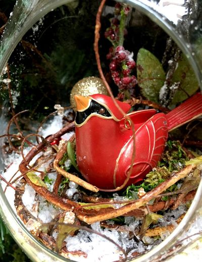 Rustic Vintage Bird Ornament Ornaments IPhoneography No People Close-up High Angle View Decoration Nature Red Water Christmas Ornament Holiday Day Celebration Plant Representation Christmas Outdoors