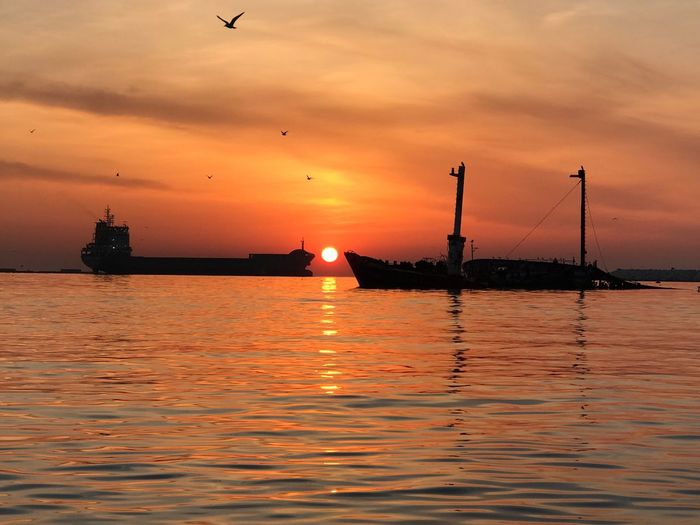 sunrise and cargo ship Water Sunset Sky Sea Cloud - Sky Orange Color Scenics - Nature Architecture Beauty In Nature Nature Nautical Vessel Waterfront Transportation Reflection Built Structure No People Guidance Vertebrate Silhouette Lighthouse