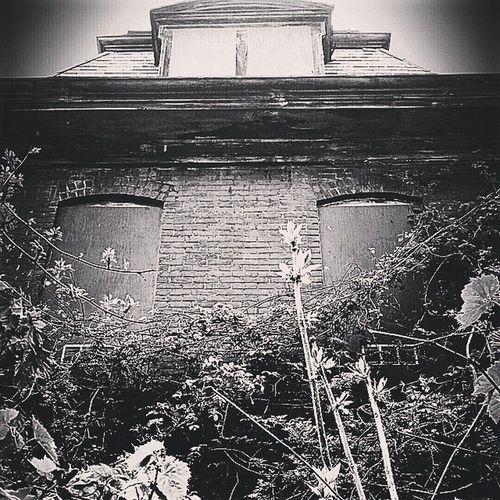 Haunted Abandonedasylum EyeEm Spooky Historical Buildings Whitecatphotography EyeEm Best Shots - Black + White Ghostly Shadows