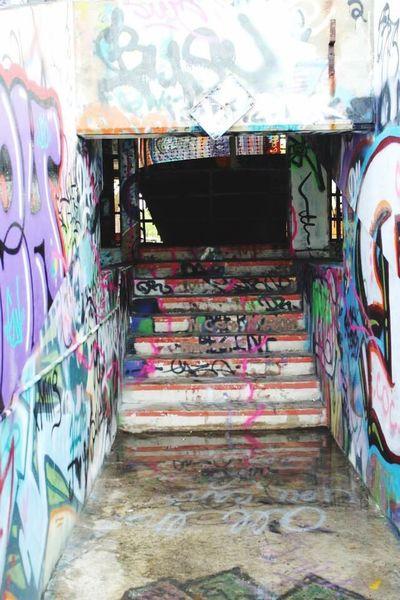 Beware the water. . .(Abandoned Miami Marine Stadium Key Biscayne, FL)