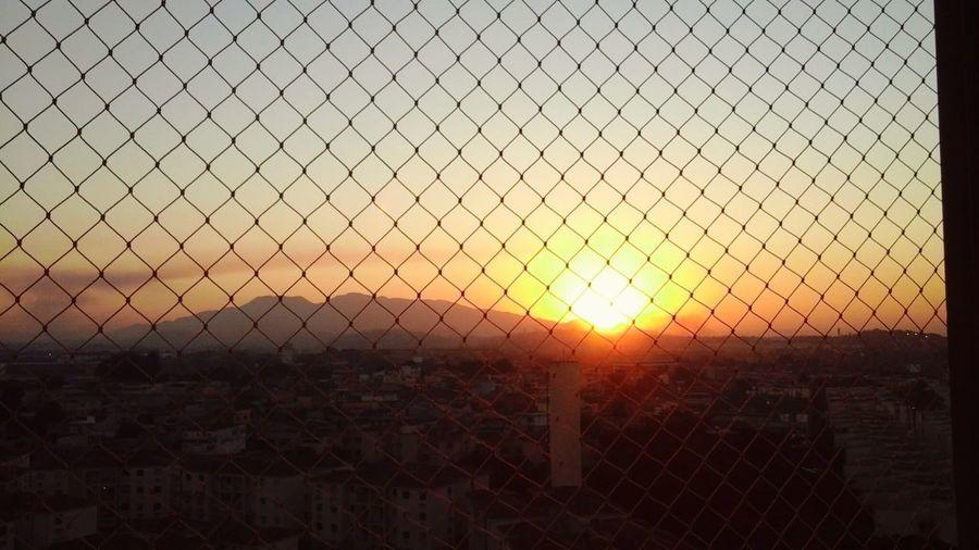 Sunshine Day First Eyeem Photo