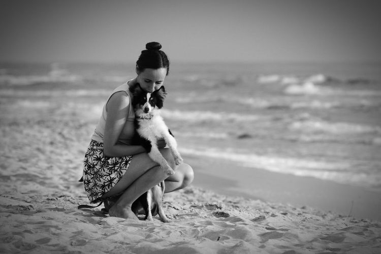 Black And White Dog Love Dog Sheltie Palanga Beach