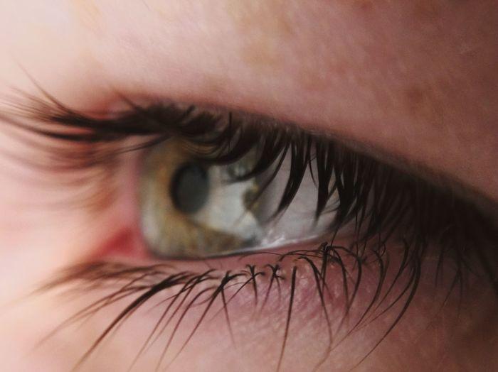 Cropped Eye Of Woman