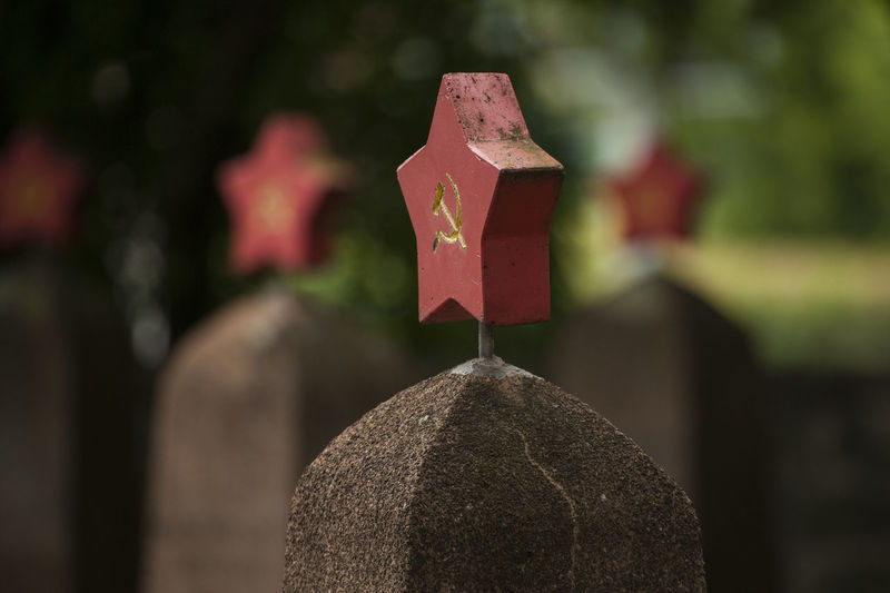 red sovjet star on gravestone at cementery for fallen russian soldiers Second World War Memorial World War 2 Belief Cemetery Close-up Day Focus On Foreground Grave Graveyard Headstones In A Row Nature No People Outdoors Red Religion Russian Russian Girl Shape Solid Spirituality Stone Stone Material Tombstone Tombstones Tree