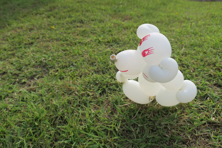 Chill Out Sitting Animal Representation Balloon Twisting Childhood Close-up Day Figurine  Grass Nature No People Outdoors White Color Summer Exploratorium
