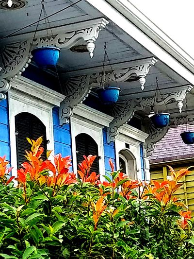 Architecture Low Angle View Building Exterior Outdoors New Orleans, LA Garden District, New Orleans