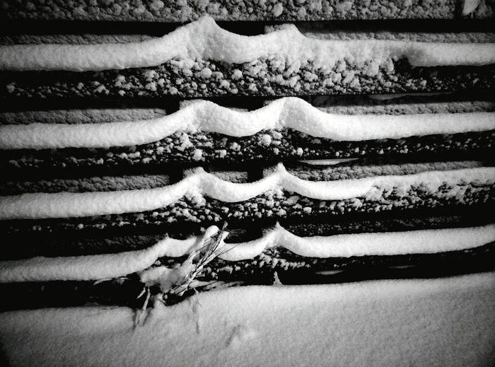 Deepfreeze Lines&Design Snow ❄ Naturefightsback