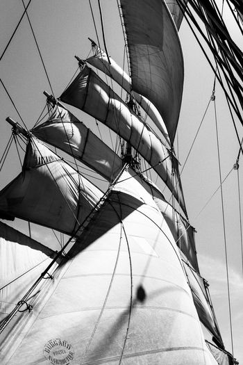 A trip on the 3 Mats Barque Belem back in June 2014. We sailed between Marseilles and Nice. Blackandwhite Bnw Bnw_friday_eyeemchallenge Bnw_society Day Destination France Lifeatsea Low Angle View Mast Mediterranean  Mediterranean Sea Nautical Vessel Outdoors Sail Sailboat Sailing Sailing Ship Sailor Sea Ship Summer Tallship The Belem Travel