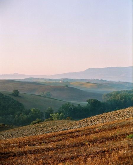 Val d'Orcia Travel Destinations Tuscany Filmphotography Italy EyeEm Landscape Scenics - Nature Environment Tranquil Scene Beauty In Nature Tranquility Agriculture Field Land Rural Scene Nature Idyllic Non-urban Scene