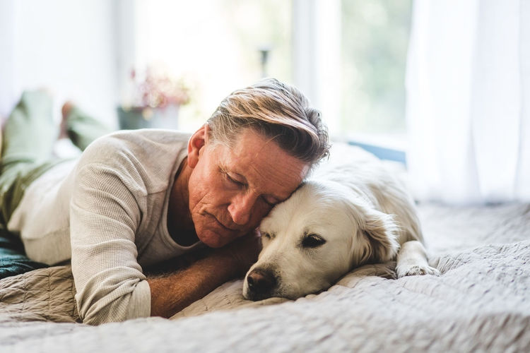 Dog lying on man relaxing at home