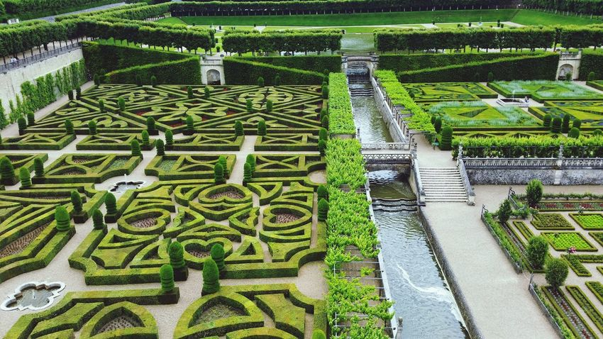 Green Color High Angle View Grass Growth Day Nature Field No People Outdoors Agriculture Beauty In Nature Travel Destinations Vacations Villandry Gardens Villandry Villandry Chateau Chateau De Villandry Villandry Castle Nature Pattern Green Color