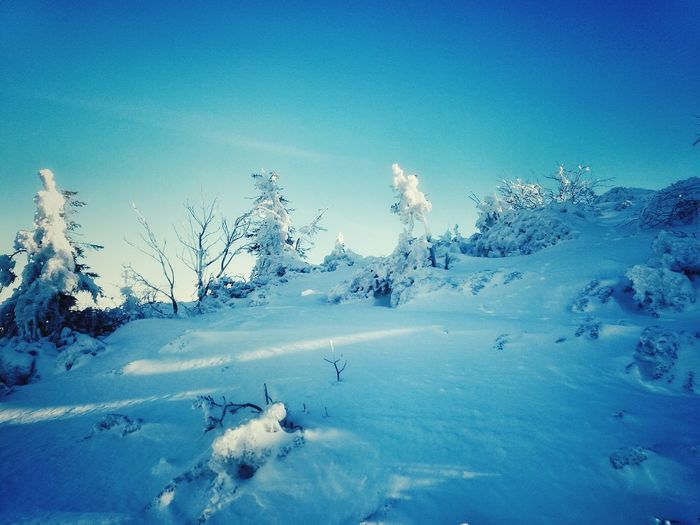 Blue Nature Cold Temperature No People Winter Snow Beauty In Nature Day Outdoors Mountain UnderSea Travel PhonePhotography Shades Of Winter
