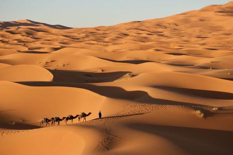 Beauty In Nature Desert Landscape Morocco Nikond5300 Outdoors Sahara Travel Travel Destinations
