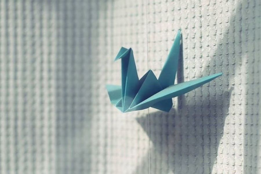 TakeoverContrast Colors The EyeEm Facebook Cover Challenge Blue White Airplane Origami