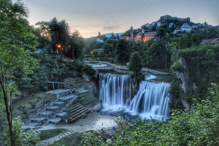 Tree Waterfall