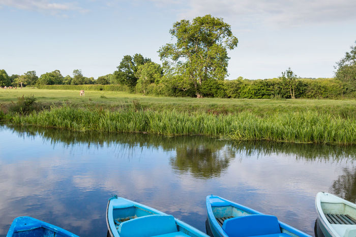 Boats on the River Ouse Barcombe Beauty In Nature Blue Boating Boats Canoes Day Grass Green Color Kayaks Lake Landscape Nature No People Outdoors Recreation  Reflection River Ouse Scenics Sky Sussex Tranquil Scene Tranquility Tree Water