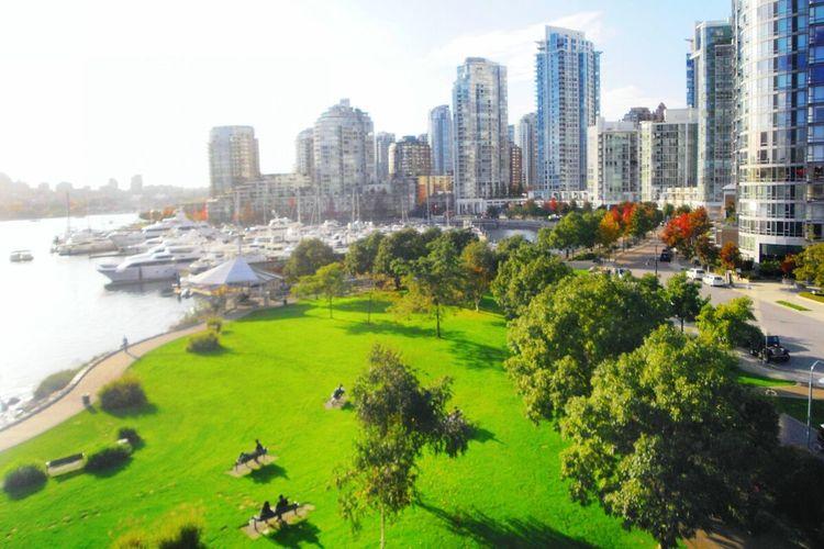 大好きなバンクーバー♡ miss u vancouver! EyeEm Gallery Eyeemphotography EyeEmBestPics Canada Vancouver Vancity Vancouverisawesome Love Beautiful Nature Green Like4like F4F カナダ バンクーバー 写真撮ってる人と繋がりたい 写真好きな人と繋がりたい ファインダー越しの私の世界