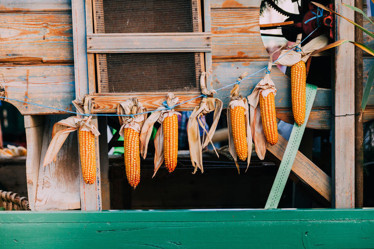 Corn hanging on string against wooden wall