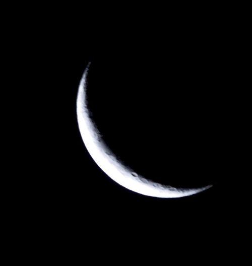 Moon Moon Shots