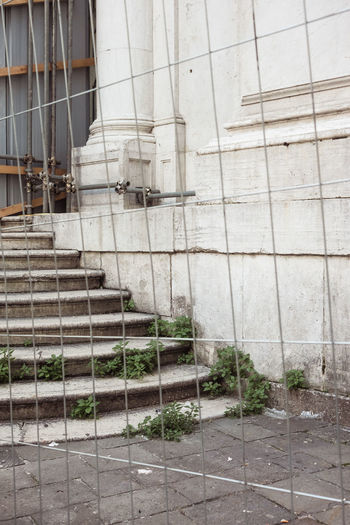 Architecture Building Building Exterior Built Structure City Construction Industry Day Flooring Gardening Growth Industry Nature No People Outdoors Plant Solid Staircase Steps And Staircases Venice Wall - Building Feature Window