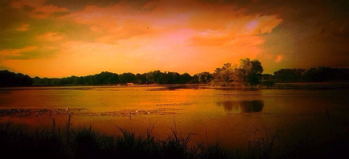 It's easy to get lost out here. A good lost. Tadaa Community EyeEm Natue Lover Evening Sun Taking Photos